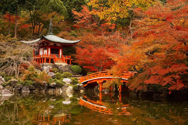 japon automne